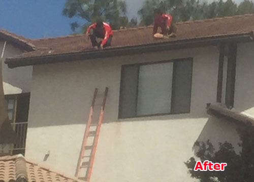High Quality Roof Maintenance